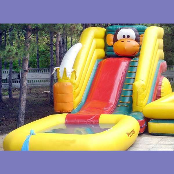 Inflatable Water Slides for Sale - Backyard Water Slides ...